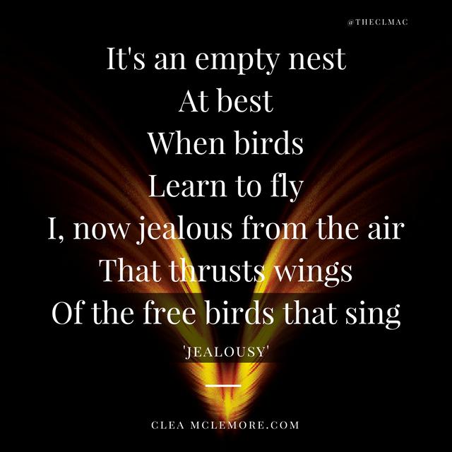 jealousy-by-clea-mclemore